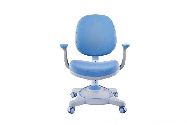 ghế chống gù C41 màu xanh